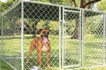 Evcil Hayvan Kafes Uygulamaları